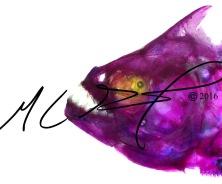 Serrasalmus sanchezi, Sanchez's piranha
